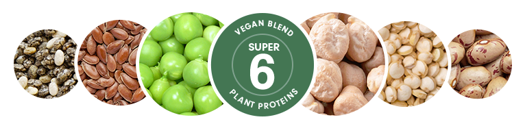 Try The Superfood Shake Vi